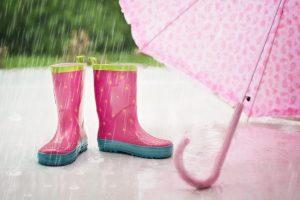 Жителей Ленобласти предупредили о дождях