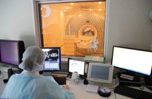 Николаевскую больницу могут перепрофилировать для больных коронавирусом