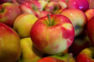 Беглов поручил привести в порядок яблоневый сад, где установлен памятник детям блокады