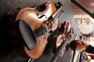 В Ботаническом саду пройдёт музыкальный фестиваль