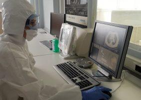 За сутки в Петербурге обследовали на коронавирус больше 17 тыс. человек