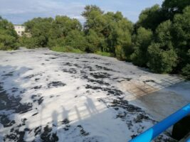 Кто убил реку: СКР и Росприроднадзор разбираются в обстоятельствах загрязнения Ижоры