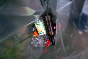 Сестрорецкие школьники очистили берег озера Разлив от 50 килограмм мусора