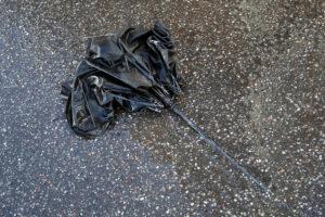 Жителей Ленобласти предупредили об усилении ветра