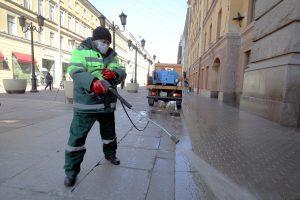 За неделю на улицы Петербурга вылили 15 литров специального шампуня
