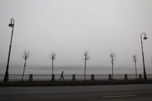 Жителей Ленобласти снова предупредили о тумане