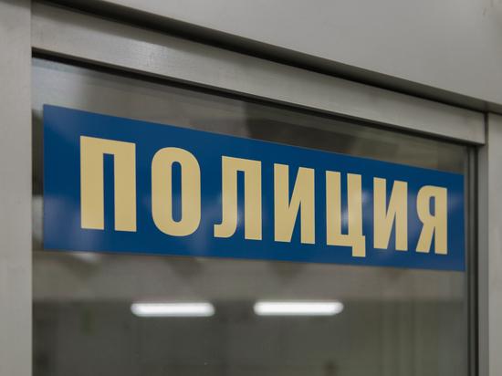 В России подросток попытался изрубить мать мачете