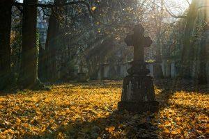 В Петербурге рецидивист устроил драку на кладбище