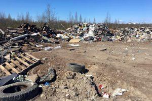Экологи и общественники из разных городов требуют разобраться со свалкой в устье реки Красненькой