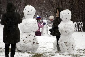 МЧС: Жителей Ленобласти ждёт снег
