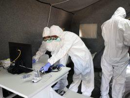 За сутки в Петербурге обследовали на коронавирус больше 33 тыс. человек