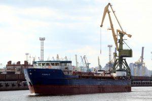 Компании-экспортёры Петербурга подводят итоги осеннего сезона