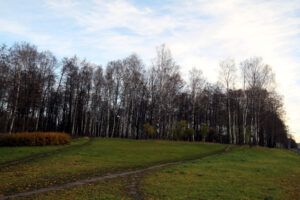 Минувшая осень в Петербурге стала самой тёплой за время наблюдений