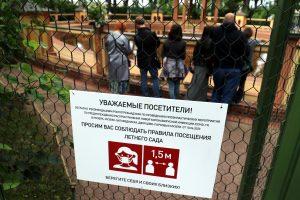 Не берём общепит, театры, кружки: в Петербурге вводятся новые «ковидные» ограничения