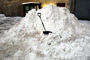 С начала сезона «снежные» пункты Петербурга приняли 200 тыс. кубометров снега