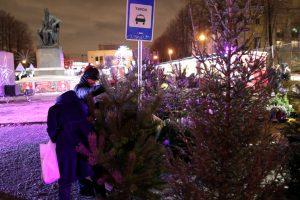 Смольный: С петербургских улиц убрали 36 незаконных ёлочных базаров
