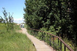 В Выборгском районе области появится экотропа имени Микаэля Агриколы