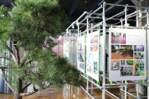 В Петербурге открылся Центр компетенций по формированию комфортной городской среды