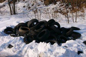 В Пушкинском районе ликвидируют две незаконные свалки