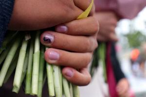 Школьникам Ленобласти разрешили очно поздравить мам и бабушек с 8 марта