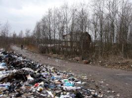 За первую неделю февраля в Петербурге выявили 12 случаев незаконного обращения с отходами