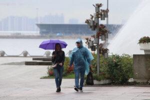 Синоптик: в воскресенье петербуржцев ждут дожди