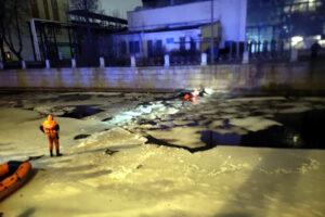 Ночью пьяный водитель утопил машину в Мойке